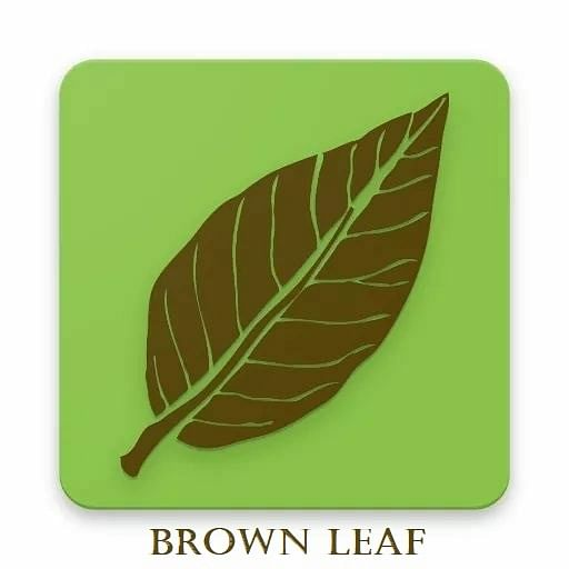 Logo of Brown Leaf