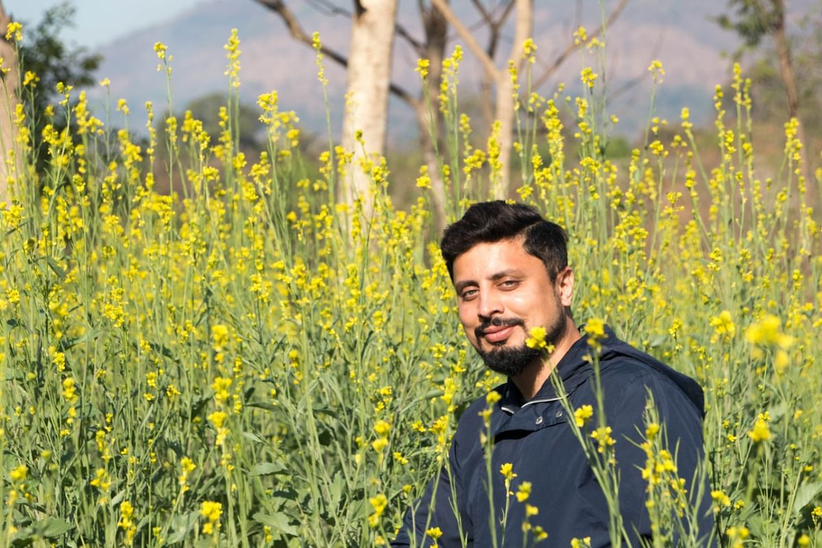 Bee man Amit Godse amid a field of yellow flowers