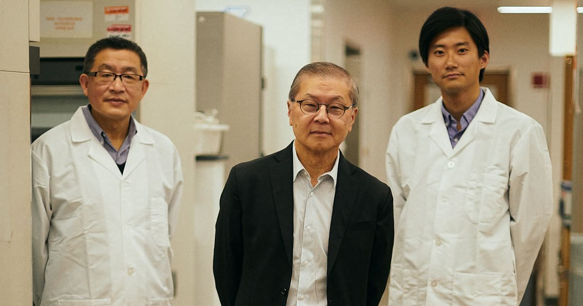 Famed AIDS Researcher Is Racing to Find a <b>Coronavirus</b> Treatment