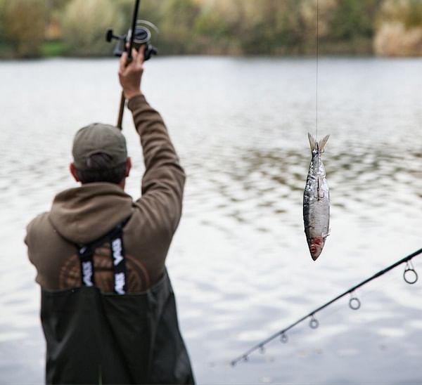 Coronavirus: Angling Direct secures new credit facility to cope with outbreak