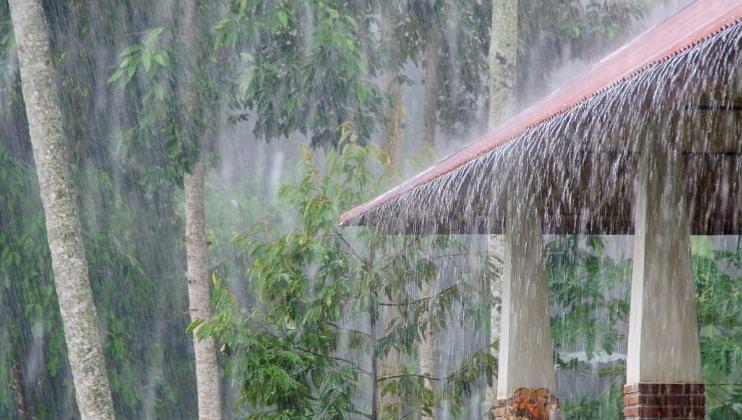 महाराष्ट्रात येत्या चार दिवसात मुसळधार पाऊसाची शक्यता, 'या' जिल्ह्यांमध्ये बरसणार सरी