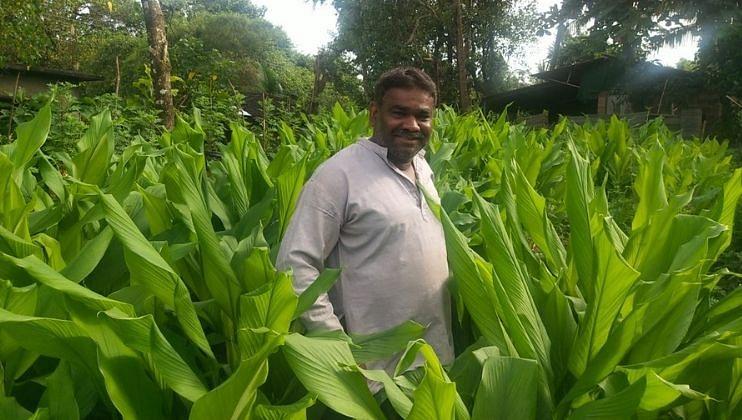 Goa: प्रगतशील शेतकऱ्याने हळद आणि आल्याची केली लागवड