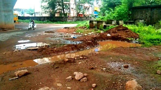 Goa: डेंग्यू सदृश्य डास चावला तर जबाबदार कोण...