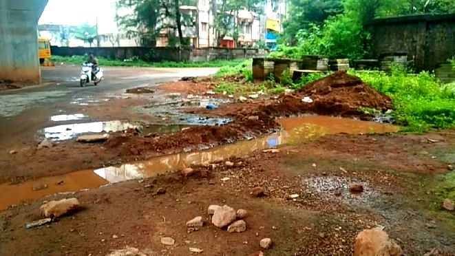 Girl dies of dengue in ponda