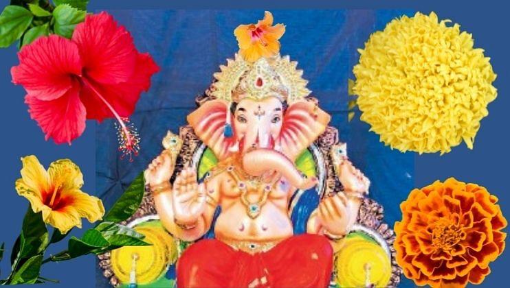 Ganesh Chaturthi: लाडक्या बाप्पांला 'ही'  फूले अर्पण करावी