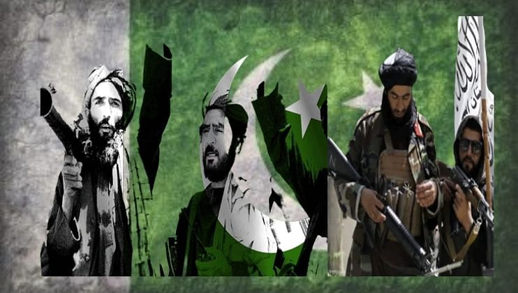 India is doing injustice to the people of Jammu- Kashmir Pakistan President Arif Alvi
