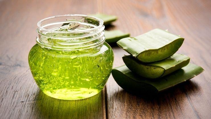 Health Tips: पोटावरील चरबी करण्यासाठी करा  कोरफड गुणकारी