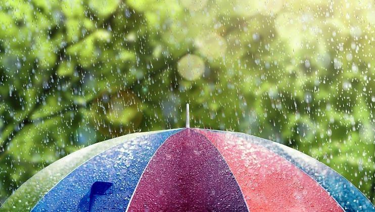 Monsoon Update: राज्यात दोन दिवस पावसाचा जोर वाढण्याची शक्यता