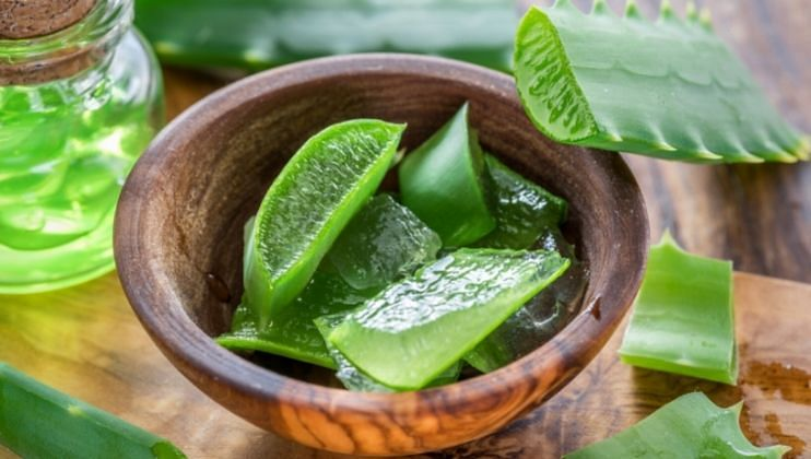 Health Tips: Aloe vera Benifits