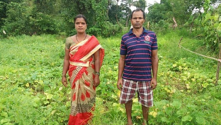 Goa: नैसर्गिक संकटांवर मात करत शेतीतून फुलविली स्वयंरोजगाराची बाग