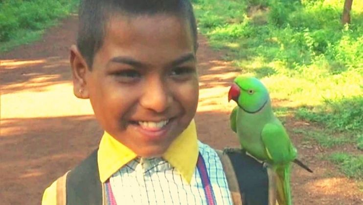 रानटी पोपट आणि शाळेतील मुलांशी कशी झाली मैत्री? जाणून घ्या