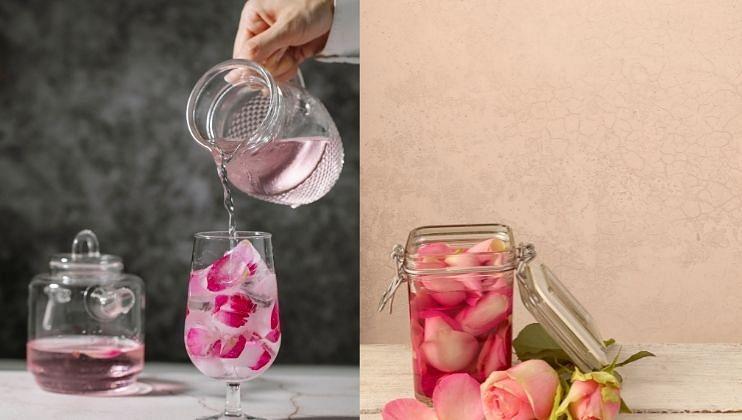 तुम्हाला दिसेल की गुलाबाच्या पाकळ्याचा रंग  पाण्यात उतरू लागतो.