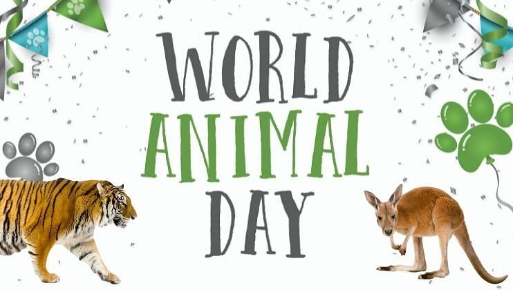 World Animal Day: भारतासह जगातील या देशांचे राष्ट्रीय प्राणी तुम्हाला माहिती आहे का?