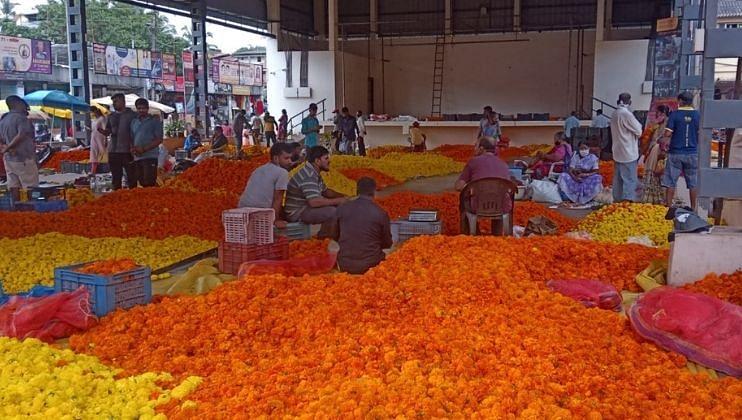 राज्यात झेंडूची फुलेही 'बाहेरूनच',स्थानिक फूले मात्र दुर्मिळ