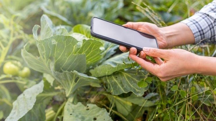 गोव्यातील शेतकरी आता 'ऑनलाईन'!