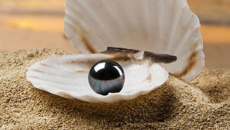 Moon Gems Pearl
