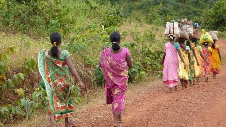 मडकईत महिला कामगारांची सतावणूक,  वाहनाची सोय नसल्याने धोका
