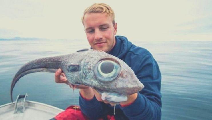रशियामध्ये सापडला एलियन मासा