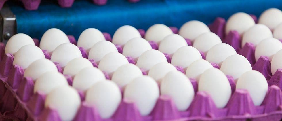 गोव्यात अंड्यांना आले चांगले दिवस; 80 ते 90 रुपये डझन
