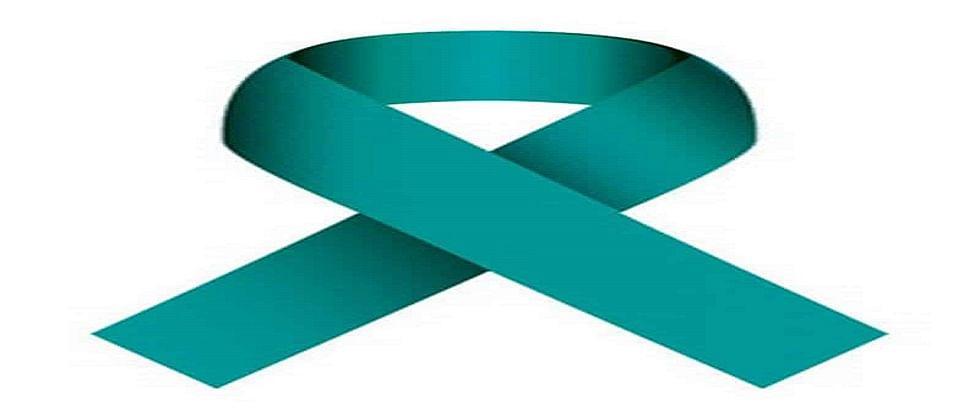 गोव्यातील महिलांची जागृकता; गोव्यात गर्भाशयाच्या कर्करोगाचे प्रमाण कमी