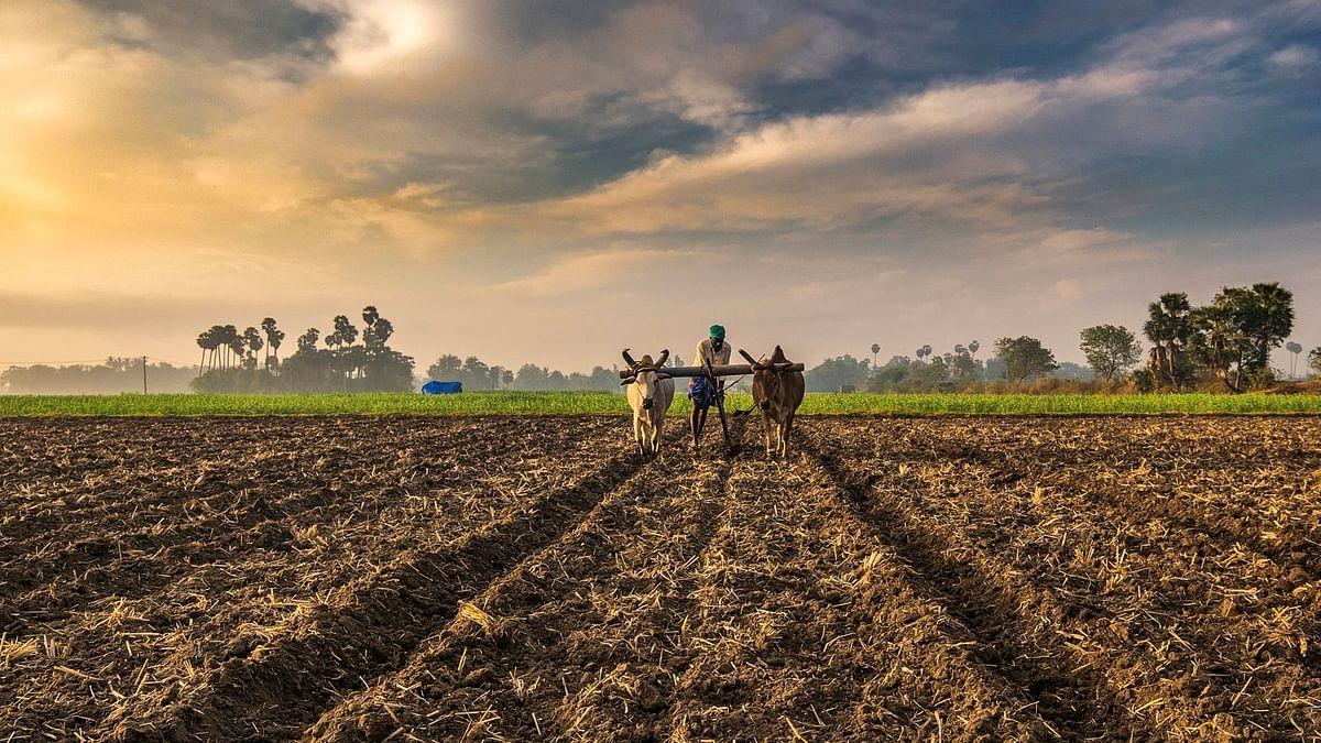 शेतमजूरांना कौशल्य आधारित प्रशिक्षण