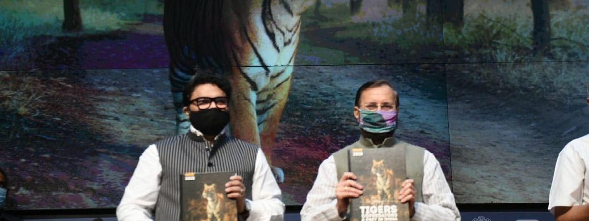 India will take leader's role in global Tiger conservation : Javadekar