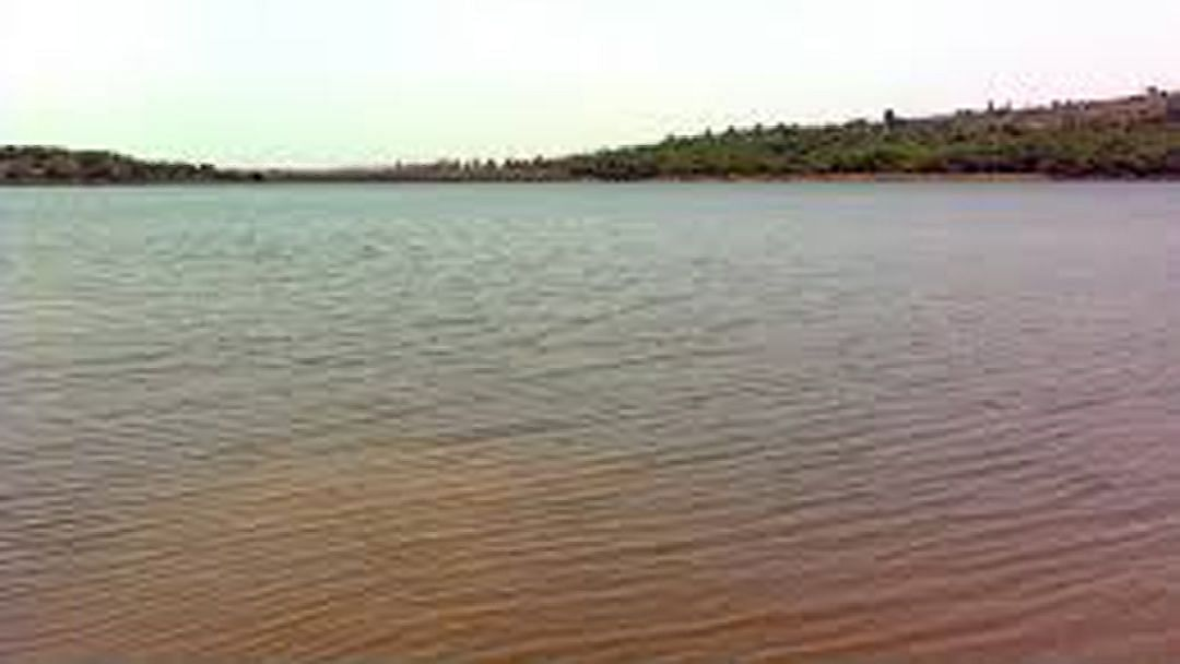 जळगाव : गाडगे तलावात तरूणाचा मृतदेह आढळला