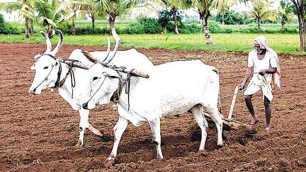 किसान योजनेची वसुली थांबवा