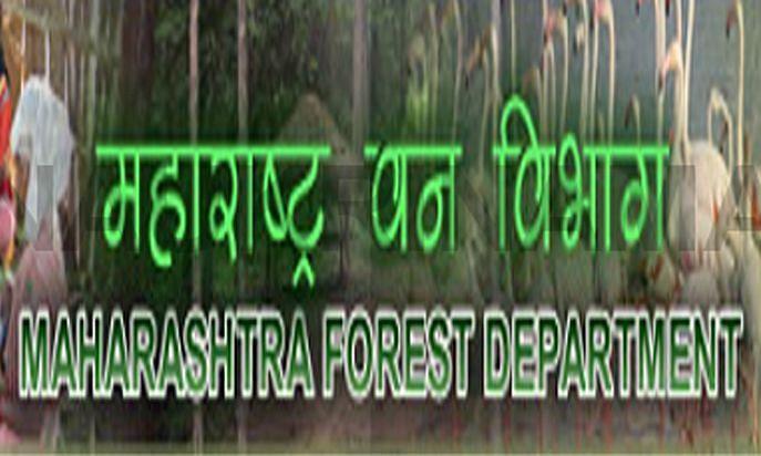 महाराष्ट्र वन सेवा (मुख्य) परीक्षा-2019 मुलाखतीच्या तारखा जाहीर