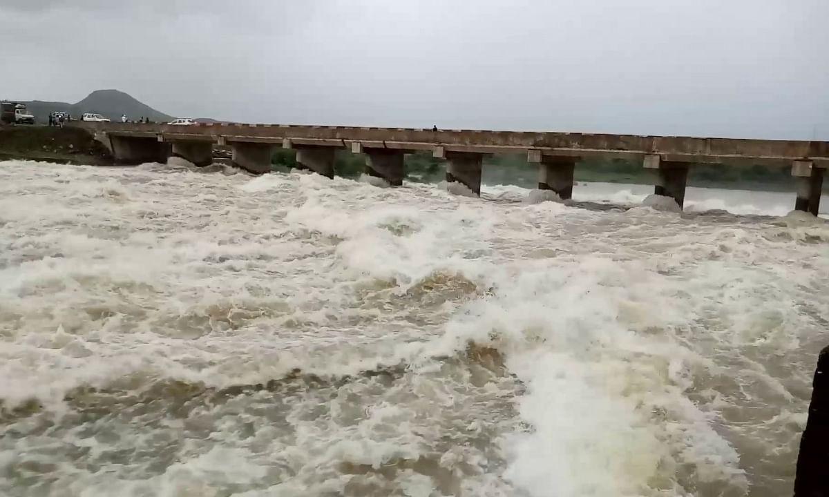 पाऊस दमदार: राज्यभरातील पाणीसाठ्यांमध्ये वाढ