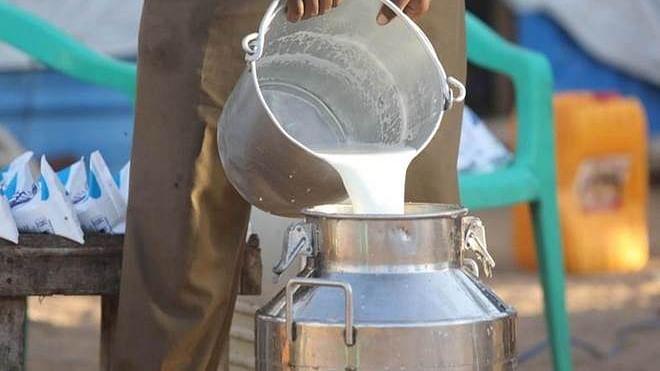 भाजपतर्फे कोविड सेंटरला दूधवाटप
