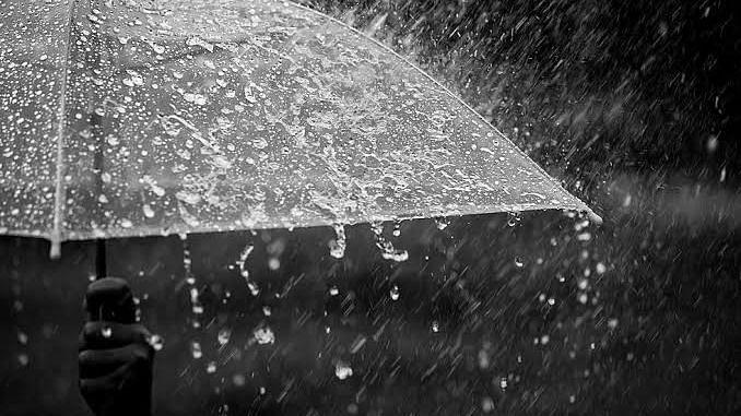 जुलैच्या एकूण सरासरी पडला इतका पाऊस