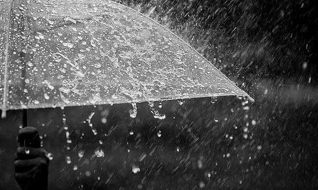 मध्यम स्वरुपाचा पाऊस; पिकांना संजीवनी