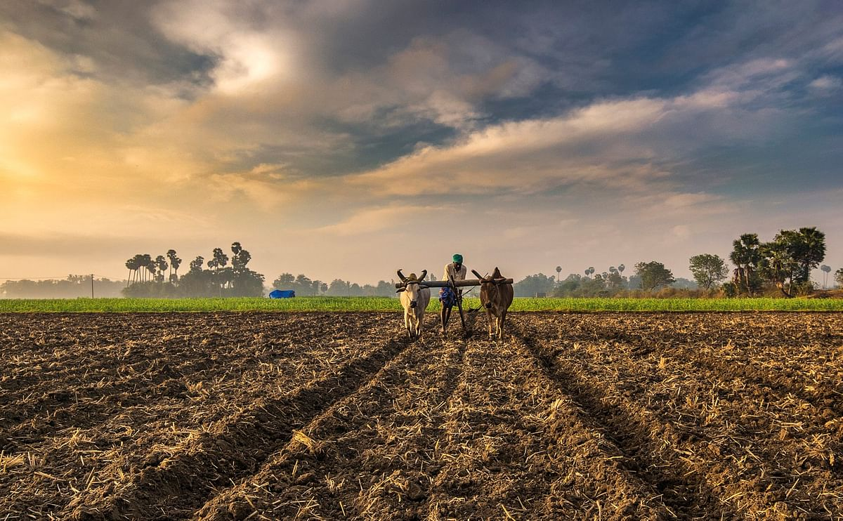 तरुण शेतकर्यांना सहकार्यासाठी कृषी विभाग कटीबद्ध