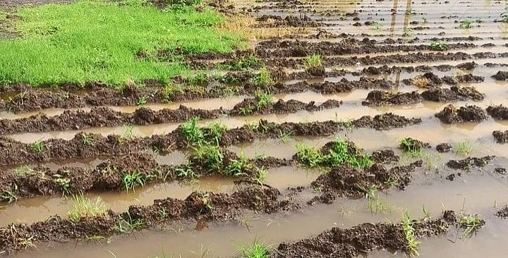 Nashik still awaits good rainfall