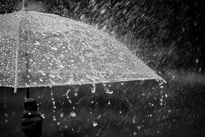 इगतपुरीत १४५ तर पेठला ७७ मिमि पाऊस