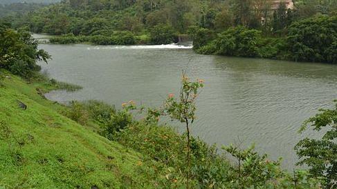 नदीबाई