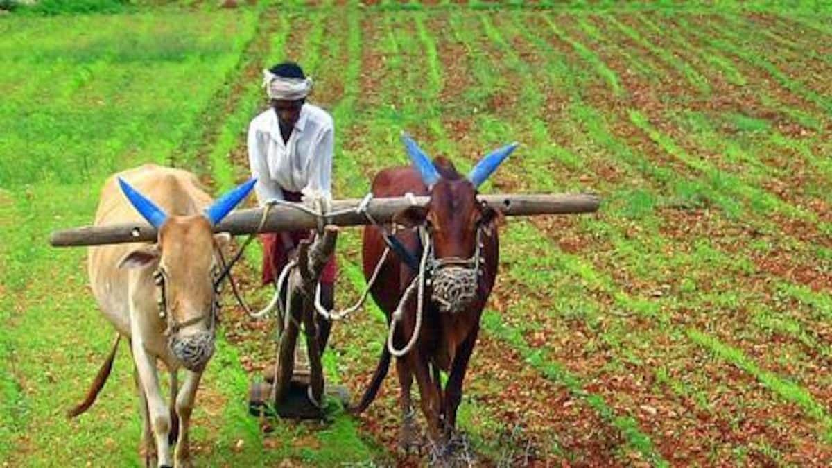 देवळाली प्रवरा येथे शेतकर्यांच्या प्रश्नांवर आंदोलन करण्याचा इशारा
