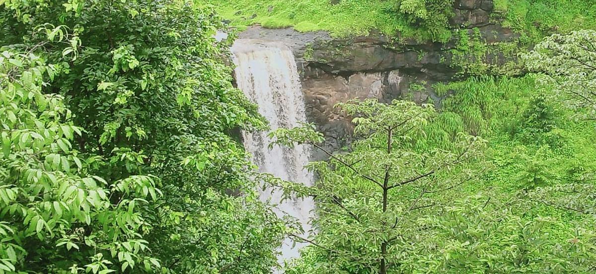 त्र्यंबकेश्वर : पर्यटकांपासून दुर्लक्षित असलेला 'हेदआंबा' धबधबा