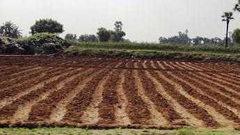 नवीन शैक्षणिक धोरण आणि भारतीय शेती