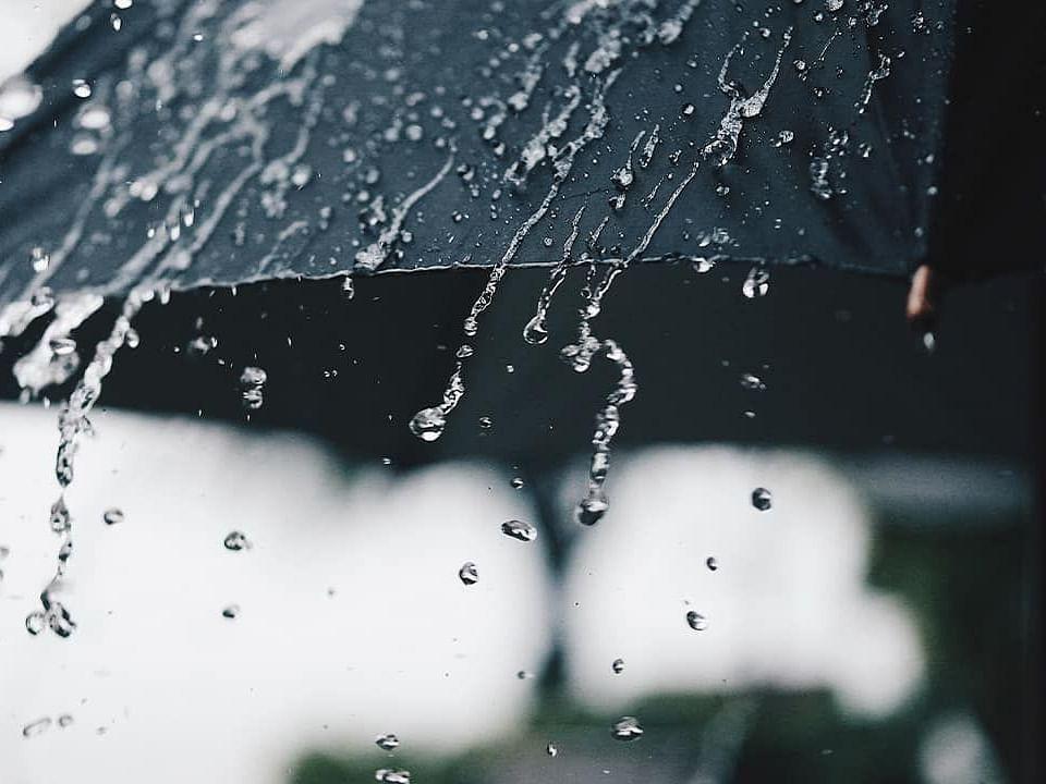 Rain alert : राज्यात पावसाचा जोर पुन्हा वाढणार; काय असणार परिस्थिती?, जाणून घ्या सविस्तर
