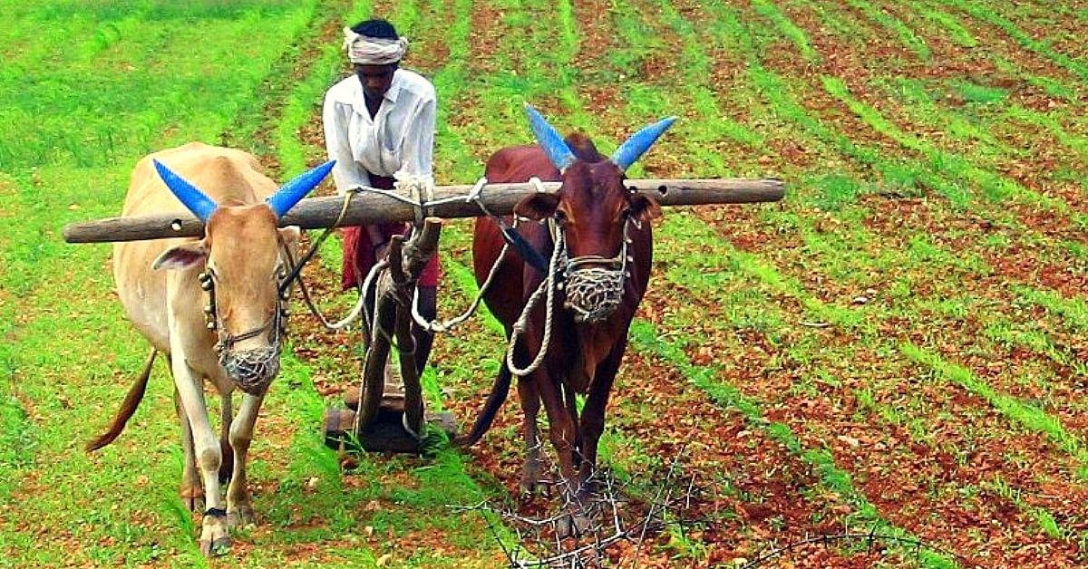 शेतकरी, कामगार संयुक्त संघर्ष समितीची स्थापना