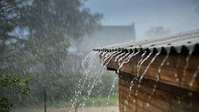 भंडारदरा पाणलोटात पाऊस