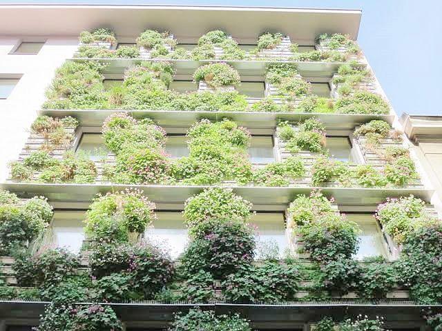 हरित नाशिकसाठी ग्रीन बिल्डींग
