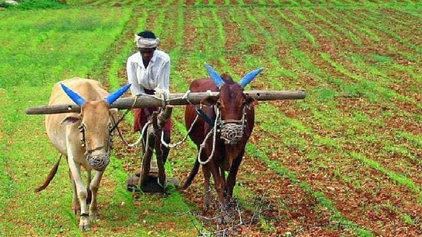 शेतकरी आंदोलनाच्या भारत बंदला लोकसेवा विकास आघाडीचा पाठिंबा