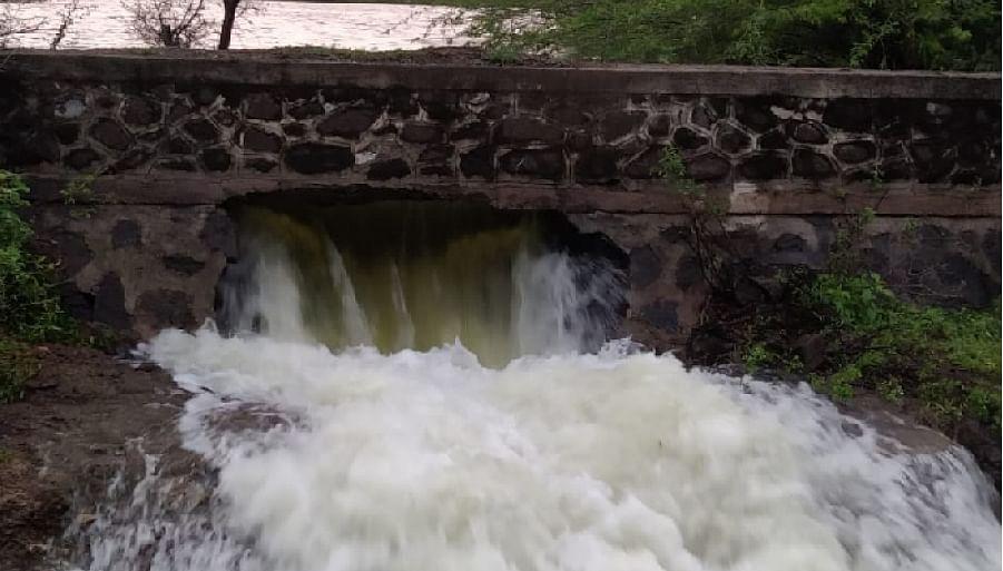 देवळाली प्रवरातील गवळी माळावरचा तलाव फुटला