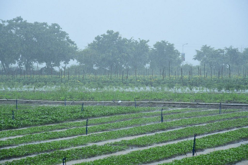 राहुरी तालुक्यात सरासरीच्या दुप्पट पाऊस