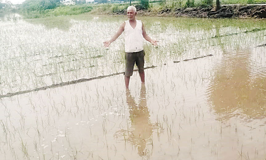 जोरदार पावसाने शेतीत तलाव