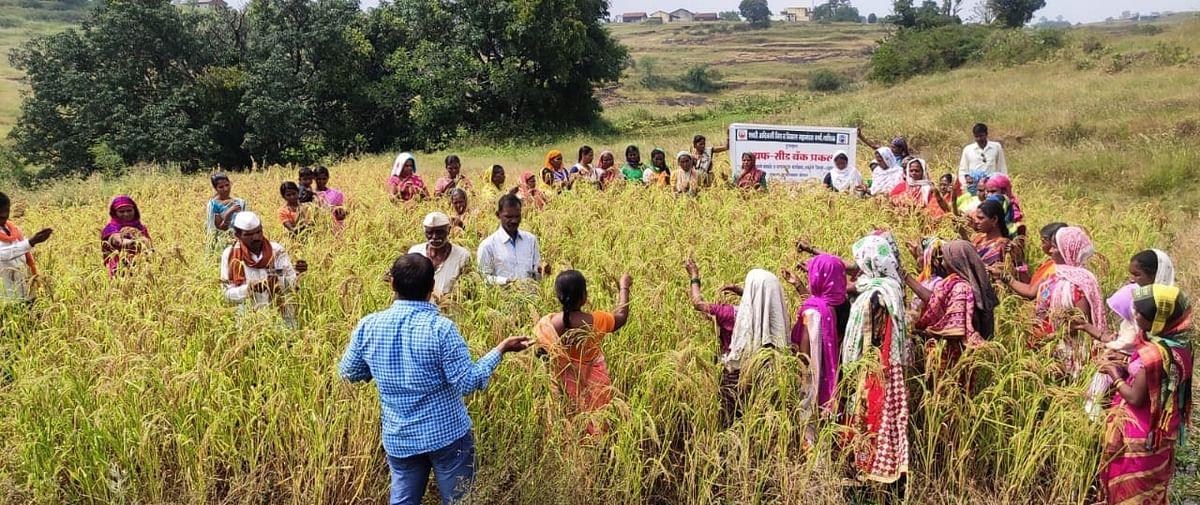 आदिवासी भागातील दहा गावांमध्ये बिजबँक प्रकल्प