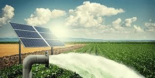 सौर कृषिपंपाची शेतकर्यांना प्रतिक्षा